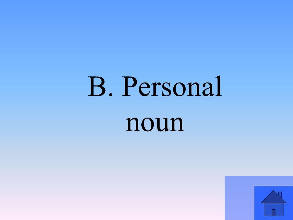 B. Personal noun
