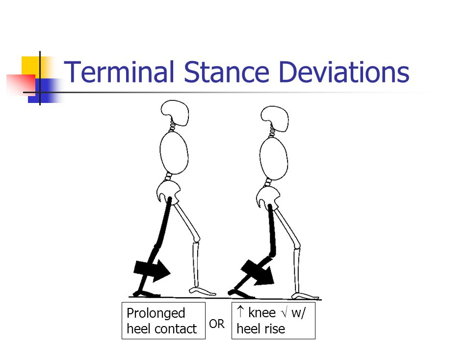 Terminal Stance Deviations Prolonged heel contact OR  knee  w/ heel rise