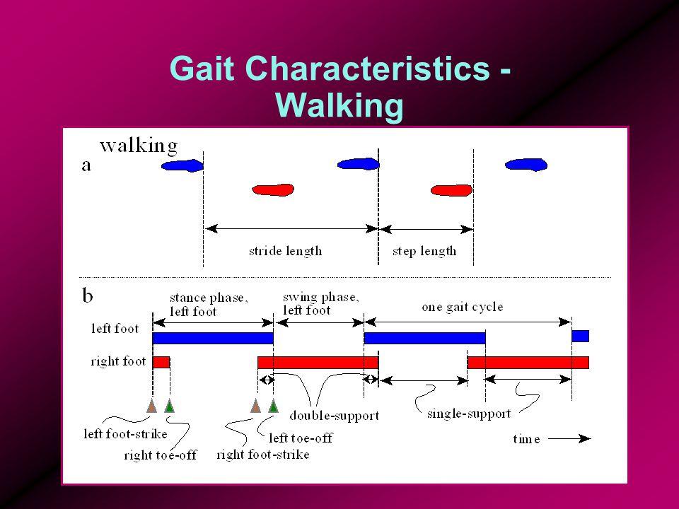 Gait Characteristics - Walking