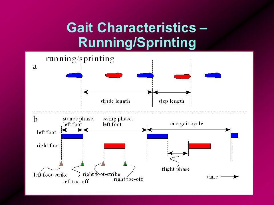 Gait Characteristics – Running/Sprinting