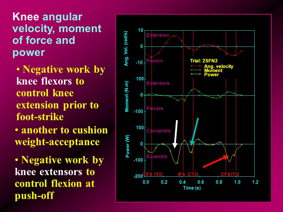 Knee angular velocity, moment of force and power Negative work by knee extensors to control flexion at push-off another to cushion weight-acceptance N