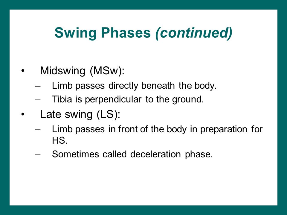 Swing Phases (continued) Midswing (MSw): –Limb passes directly beneath the body. –Tibia is perpendicular to the ground. Late swing (LS): –Limb passes