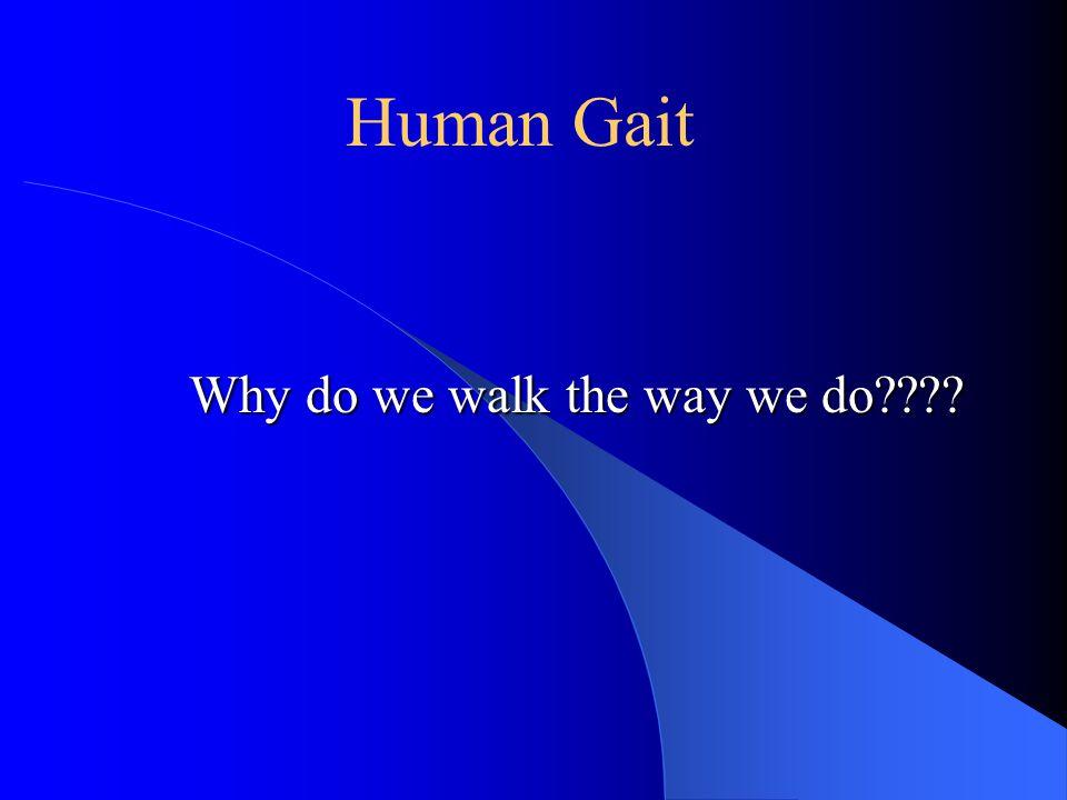 Why do we walk the way we do???? Human Gait