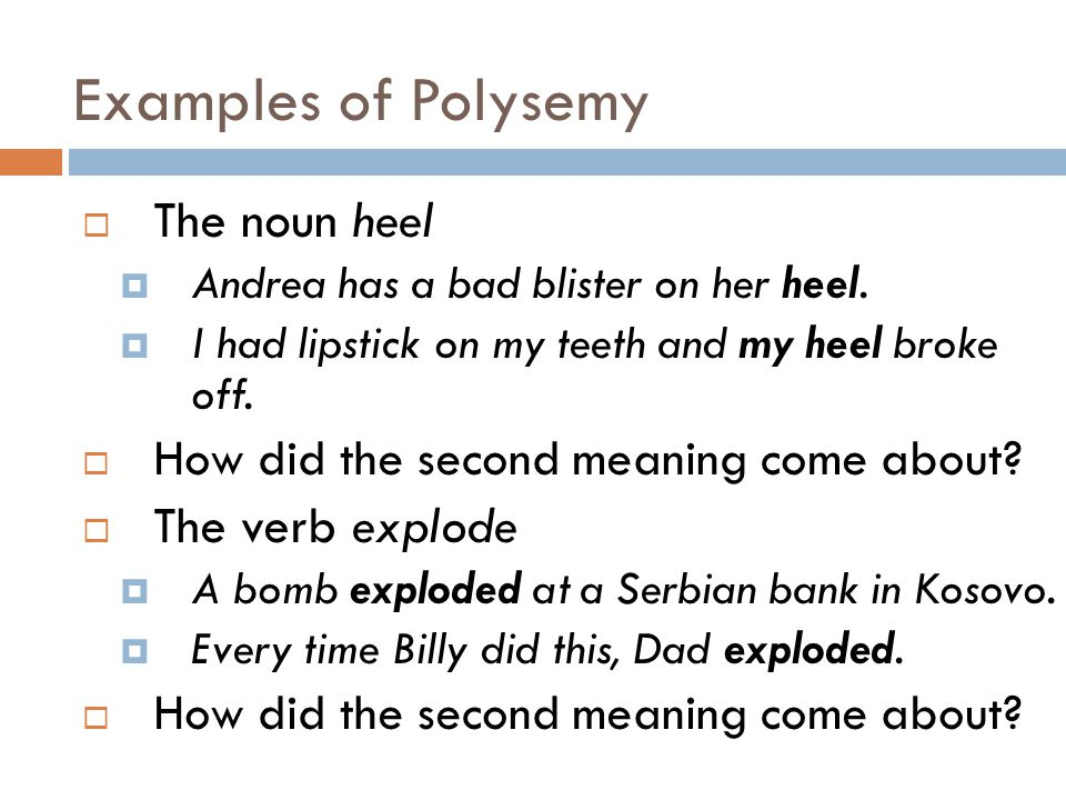 Examples of Polysemy  The noun heel  Andrea has a bad blister on her heel.