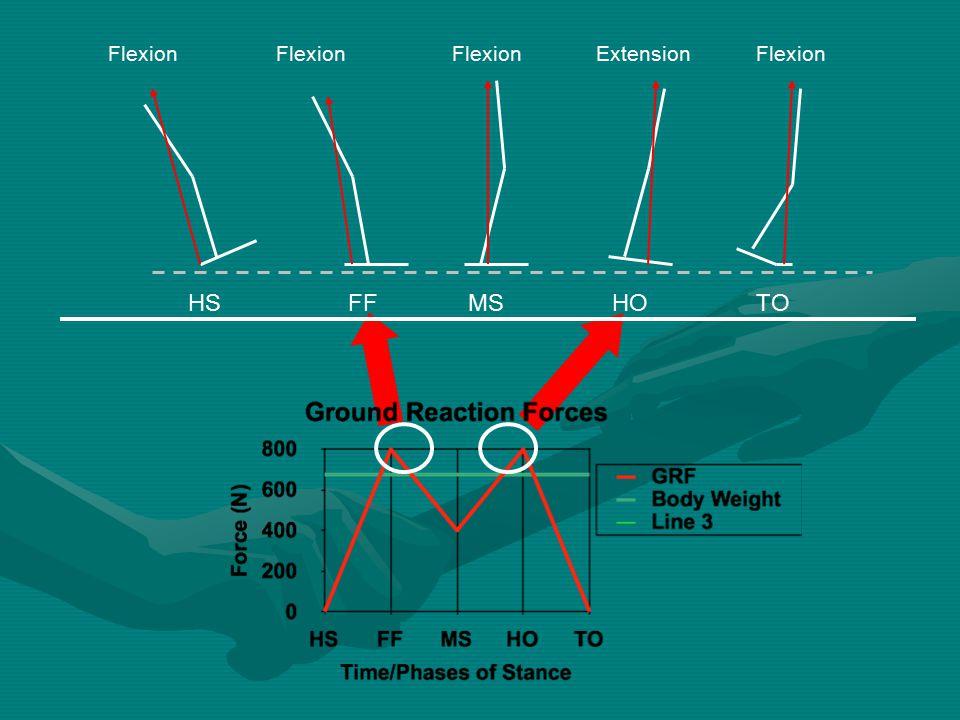 HSFFMSHOTO Flexion Extension