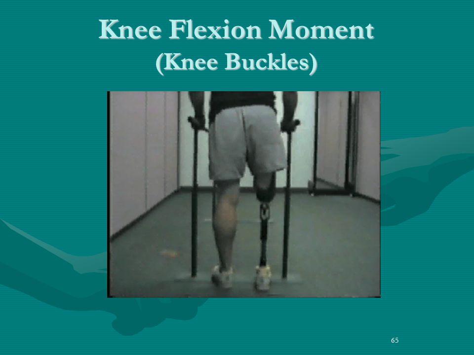 65 Knee Flexion Moment (Knee Buckles)