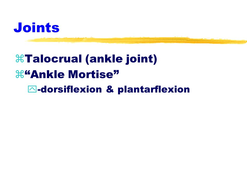 Anterior/Posterior Tibial Tendinitis zSigns & Symptoms y-pain over the muscle or tendon zManagement y-anterior=avoid hills & decrease mileage y-correct pronation y-ice and aggressive stretching