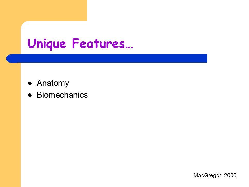 Anatomy Biomechanics MacGregor, 2000