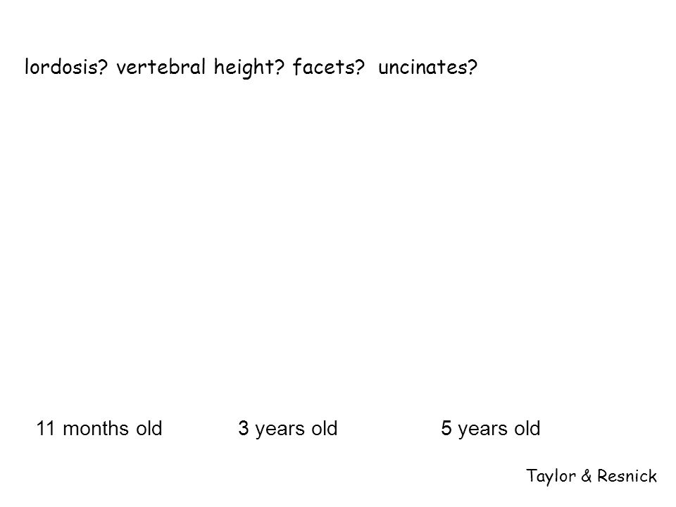 11 months old3 years old5 years old Taylor & Resnick lordosis? vertebral height? facets? uncinates?