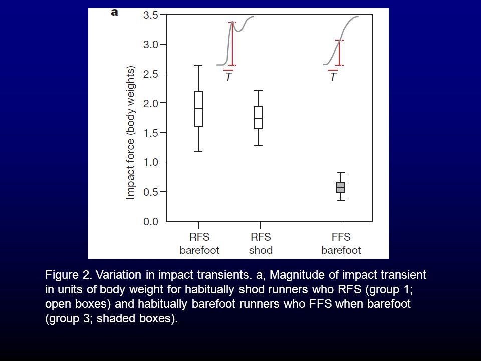 Figure 2. Variation in impact transients.
