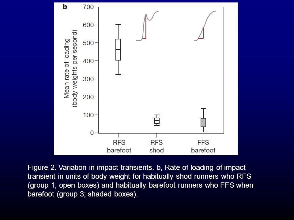 Figure 2.Variation in impact transients.