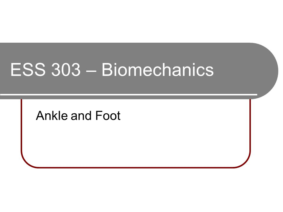 ESS 303 – Biomechanics Ankle and Foot