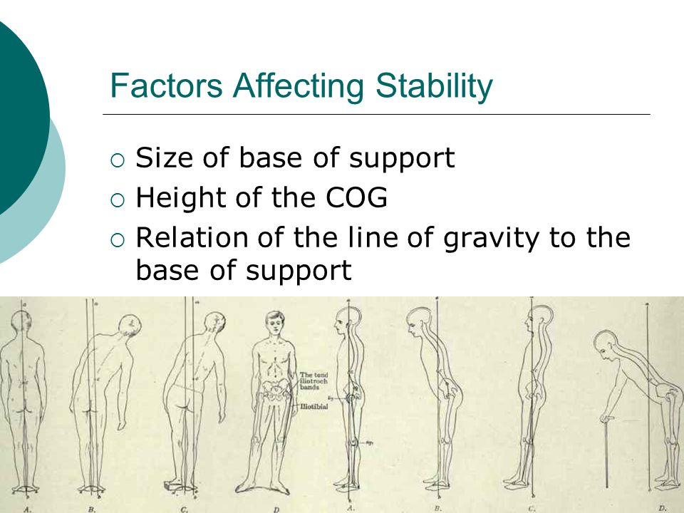 Factors Affecting Stability  Size of base of support  Height of the COG  Relation of the line of gravity to the base of support