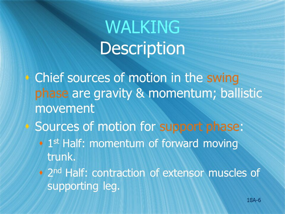 18A-7 WALKING Anatomical Analysis  Major Components of Walking 1.Pelvic rotation 2.Pelvic tilt 3.Knee flexion 4.Hip flexion 5.Knee and ankle interaction 6.Lateral pelvic displacement  Major Components of Walking 1.Pelvic rotation 2.Pelvic tilt 3.Knee flexion 4.Hip flexion 5.Knee and ankle interaction 6.Lateral pelvic displacement
