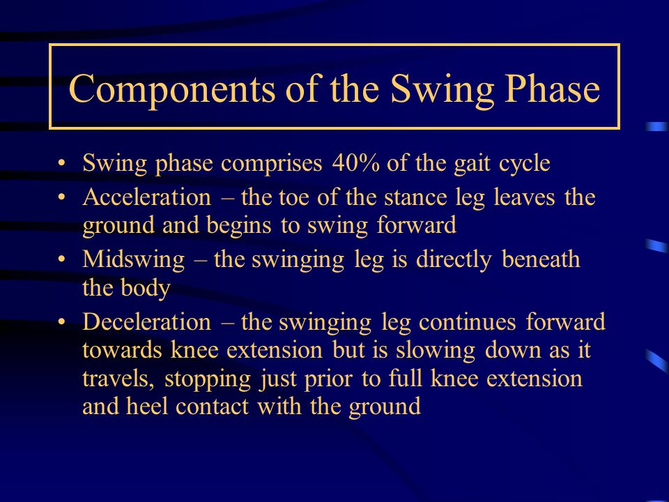 Components of the Swing Phase Swing phase comprises 40% of the gait cycle Acceleration – the toe of the stance leg leaves the ground and begins to swi
