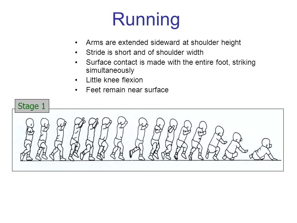 Running Arms are extended sideward at shoulder height Stride is short and of shoulder width Surface contact is made with the entire foot, striking simultaneously Little knee flexion Feet remain near surface Stage 1