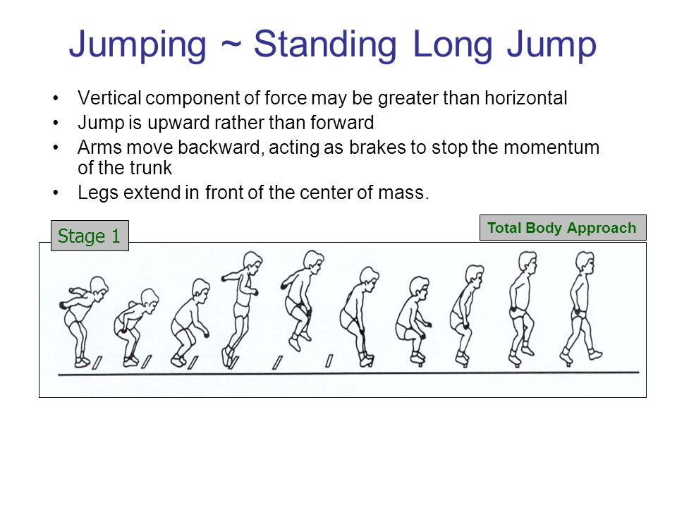 Jumping ~ Standing Long Jump Vertical component of force may be greater than horizontal Jump is upward rather than forward Arms move backward, acting as brakes to stop the momentum of the trunk Legs extend in front of the center of mass.