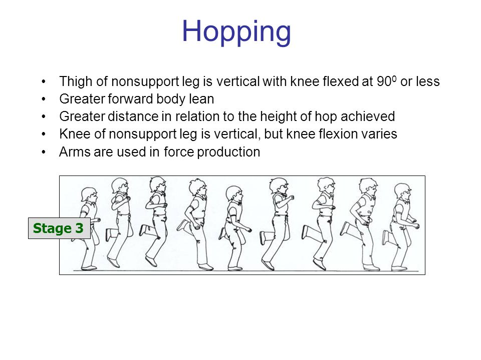 Hopping Thigh of nonsupport leg is vertical with knee flexed at 90 0 or less Greater forward body lean Greater distance in relation to the height of hop achieved Knee of nonsupport leg is vertical, but knee flexion varies Arms are used in force production Stage 3