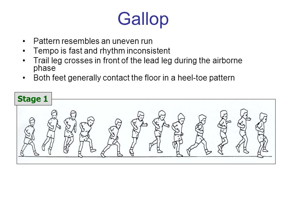 Gallop Pattern resembles an uneven run Tempo is fast and rhythm inconsistent Trail leg crosses in front of the lead leg during the airborne phase Both feet generally contact the floor in a heel-toe pattern Stage 1
