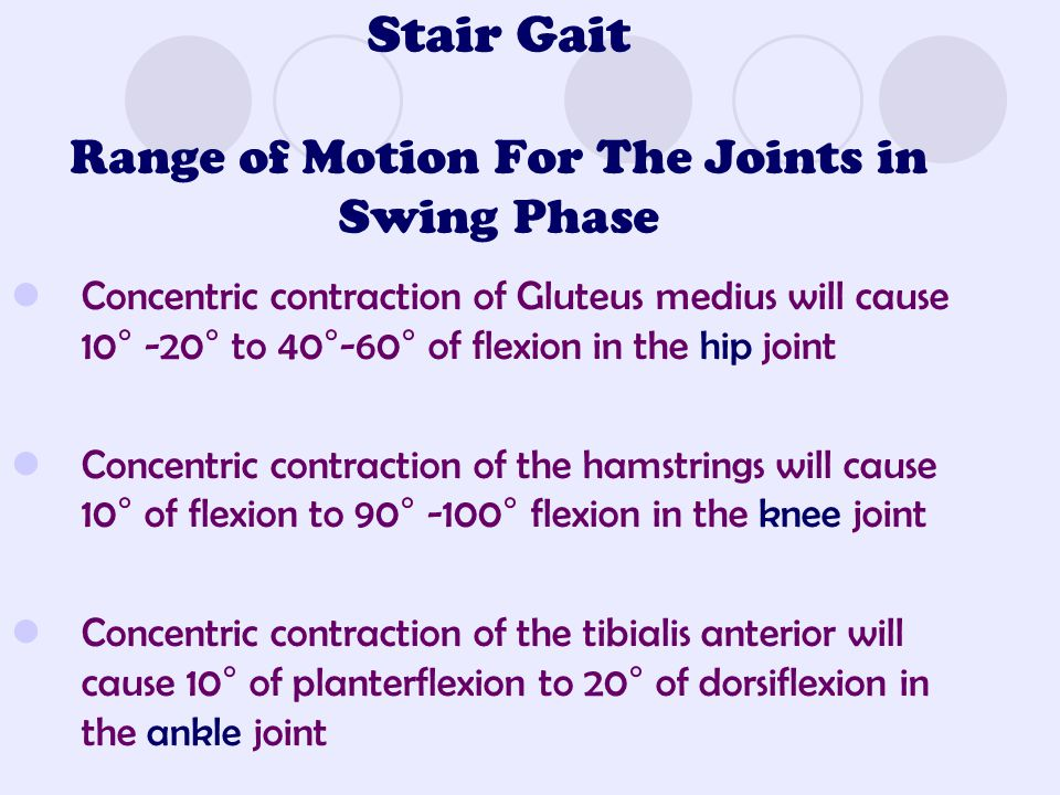 Stair Gait Range of Motion For The Joints in Swing Phase Concentric contraction of Gluteus medius will cause 10° -20° to 40°-60° of flexion in the hip joint Concentric contraction of the hamstrings will cause 10° of flexion to 90° -100° flexion in the knee joint Concentric contraction of the tibialis anterior will cause 10° of planterflexion to 20° of dorsiflexion in the ankle joint
