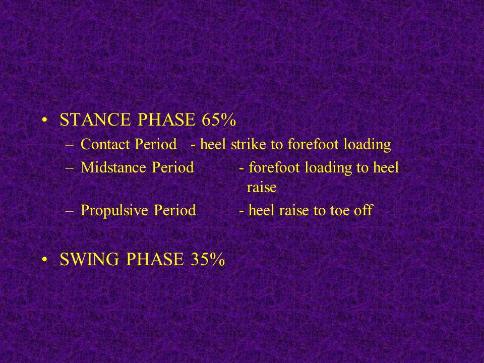 STANCE PHASE 65% –Contact Period - heel strike to forefoot loading –Midstance Period - forefoot loading to heel raise –Propulsive Period - heel raise