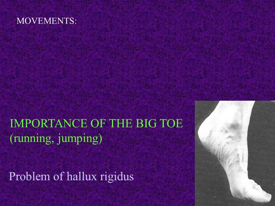 MOVEMENTS: IMPORTANCE OF THE BIG TOE (running, jumping) Problem of hallux rigidus