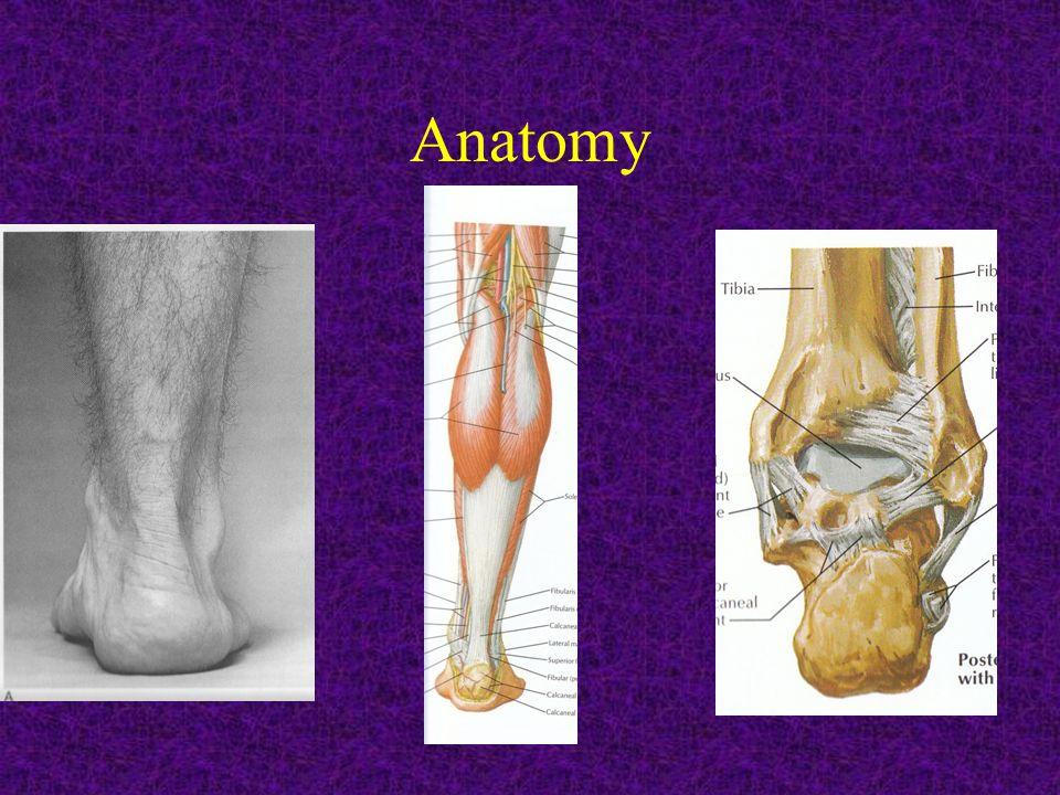 Antalgic gait