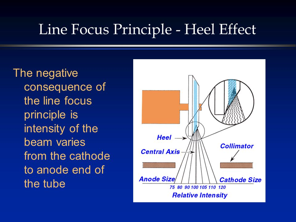 Line Focus Principle - Heel Effect The negative consequence of the line focus principle is intensity of the beam varies from the cathode to anode end