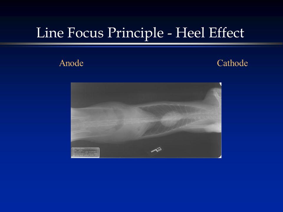 Line Focus Principle - Heel Effect CathodeAnode