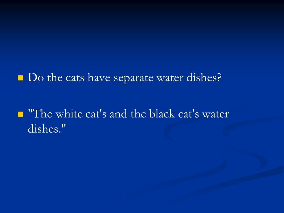 Do the cats have separate water dishes?
