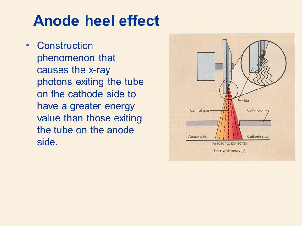Anode heel effect Construction phenomenon that causes the x-ray photons exiting the tube on the cathode side to have a greater energy value than those