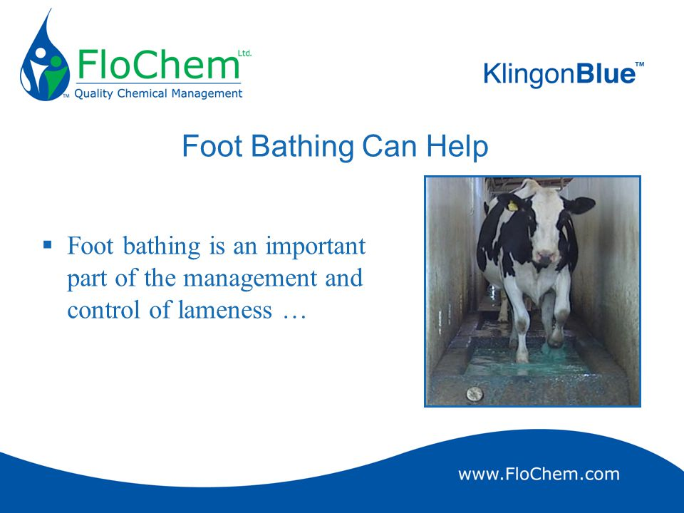 Limitations of Foot Bathing  Short contact time for antibacterial agent  An ideal agents should persist on the skin after treatment to prolong curative function and to act as a preventative;  Short contact time for zinc sulphate  Zinc sulphate penetrates hoof/horn at less than 0.5mm per hour.
