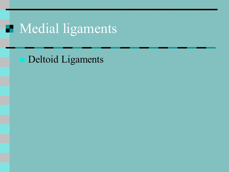Medial ligaments Deltoid Ligaments