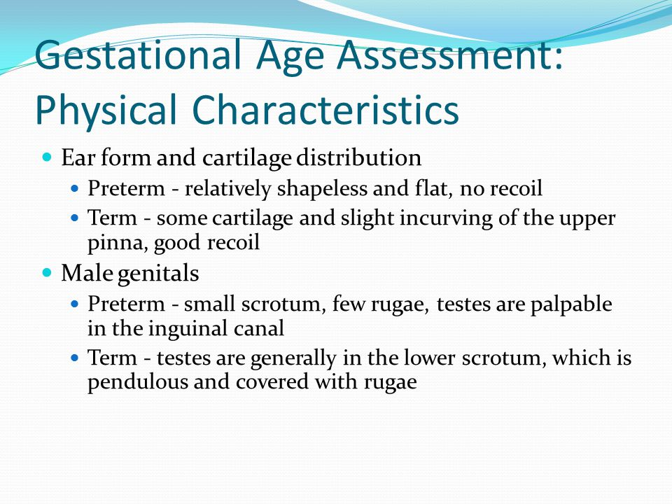 Gestational Age Assessment: Physical Characteristics Ear form and cartilage distribution Preterm - relatively shapeless and flat, no recoil Term - som
