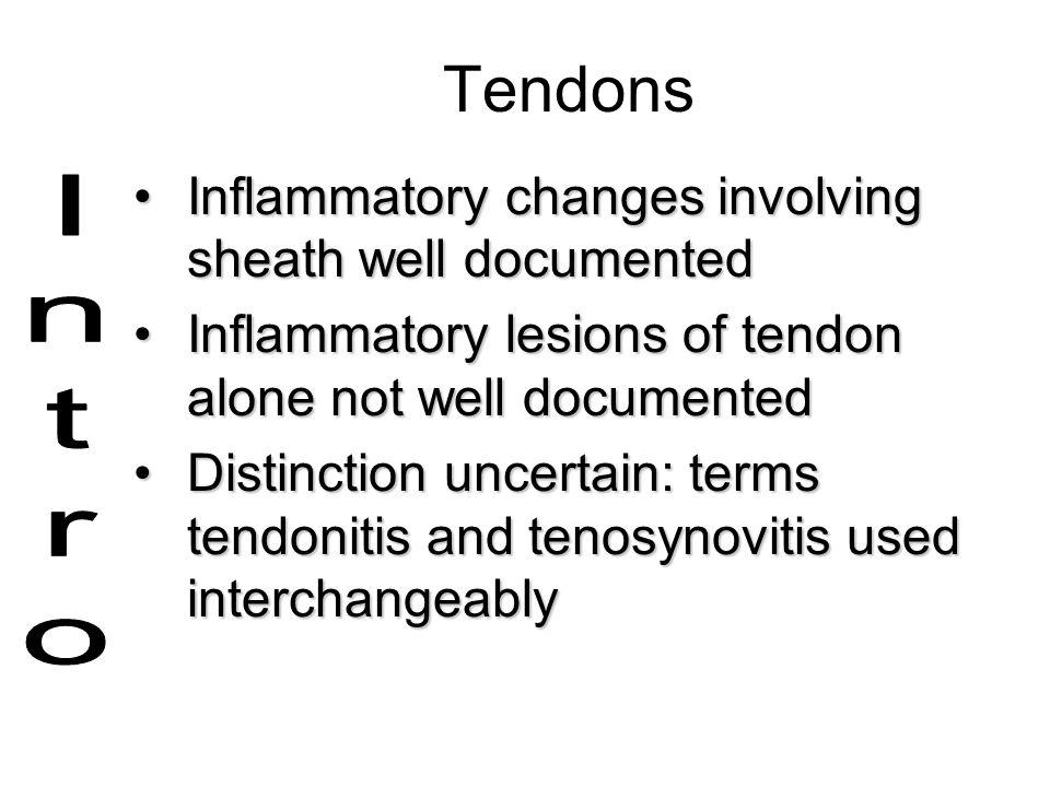 Tendons Inflammatory changes involving sheath well documentedInflammatory changes involving sheath well documented Inflammatory lesions of tendon alon
