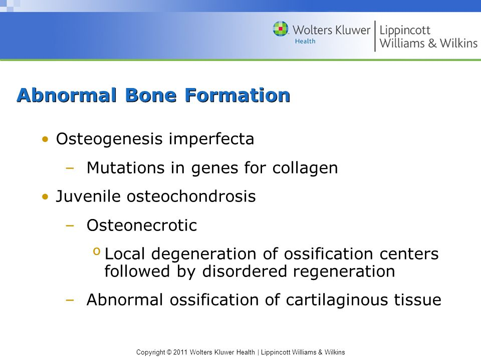 Copyright © 2011 Wolters Kluwer Health | Lippincott Williams & Wilkins Abnormal Bone Formation Osteogenesis imperfecta –Mutations in genes for collagen Juvenile osteochondrosis –Osteonecrotic ºLocal degeneration of ossification centers followed by disordered regeneration –Abnormal ossification of cartilaginous tissue