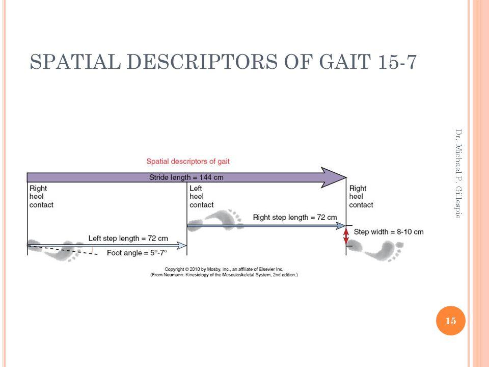 SPATIAL DESCRIPTORS OF GAIT 15-7 15 Dr. Michael P. Gillespie