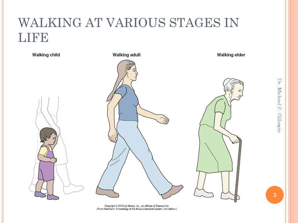WALKING AT VARIOUS STAGES IN LIFE 3 Dr. Michael P. Gillespie