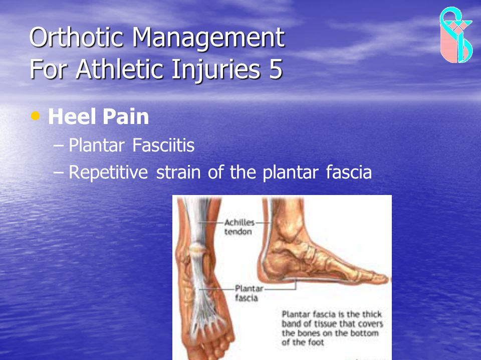 Orthotic Management For Athletic Injuries 5 Heel Pain – –Plantar Fasciitis – –Repetitive strain of the plantar fascia