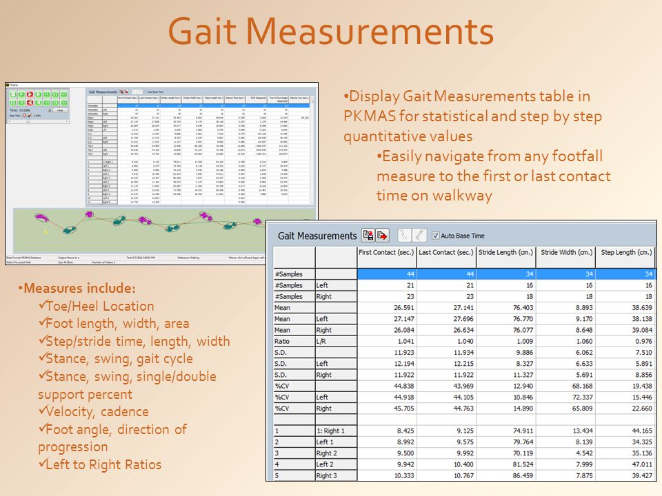 Gait Measurements Display Gait Measurements table in PKMAS for statistical and step by step quantitative values Easily navigate from any footfall measure to the first or last contact time on walkway Measures include: Toe/Heel Location Foot length, width, area Step/stride time, length, width Stance, swing, gait cycle Stance, swing, single/double support percent Velocity, cadence Foot angle, direction of progression Left to Right Ratios