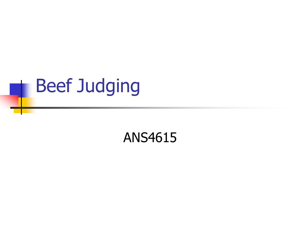 Beef Judging ANS4615