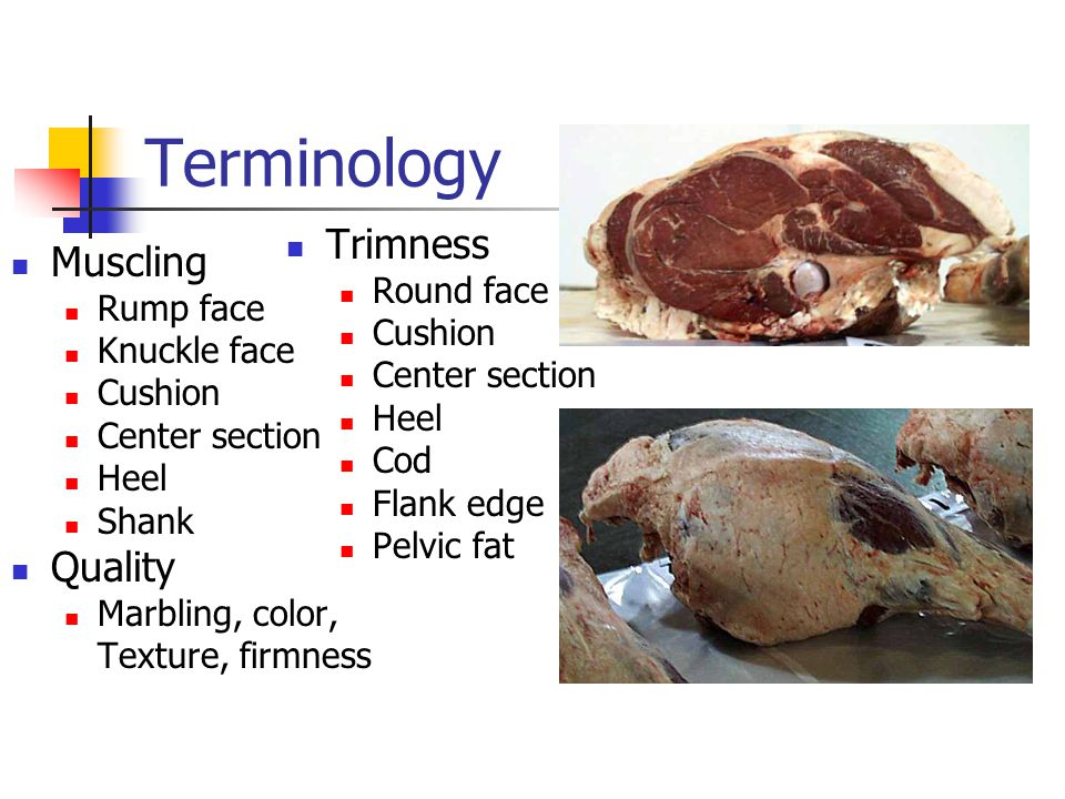 Terminology Muscling Rump face Knuckle face Cushion Center section Heel Shank Quality Marbling, color, Texture, firmness Trimness Round face Cushion Center section Heel Cod Flank edge Pelvic fat