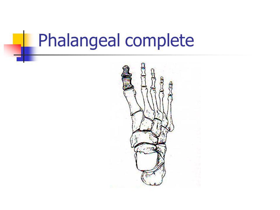 Phalangeal complete