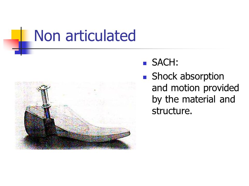 Non articulated SACH: Shock absorption and motion provided by the material and structure.