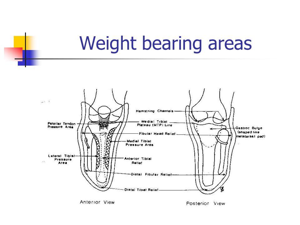 Weight bearing areas