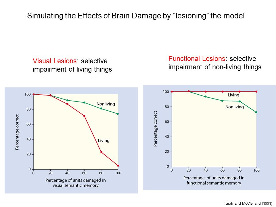 Simulating the Effects of Brain Damage by lesioning the model Farah and McClelland (1991) Visual Lesions: selective impairment of living things Functional Lesions: selective impairment of non-living things