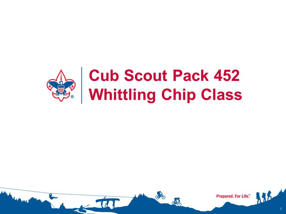 1 Cub Scout Pack 452 Whittling Chip Class