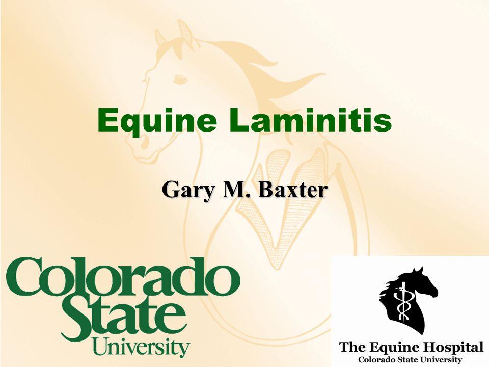 Equine Laminitis Gary M. Baxter