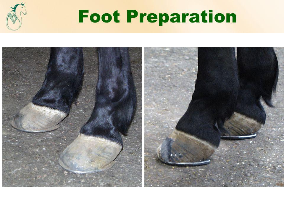 Foot Preparation