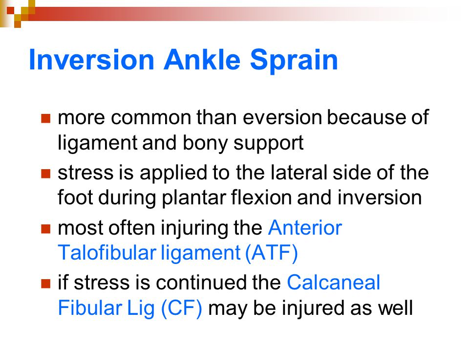 Inversion Ankle Sprain more common than eversion because of ligament and bony support stress is applied to the lateral side of the foot during plantar